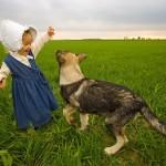 farm-188105_640
