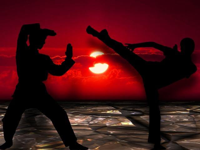 martial-arts-291049_640