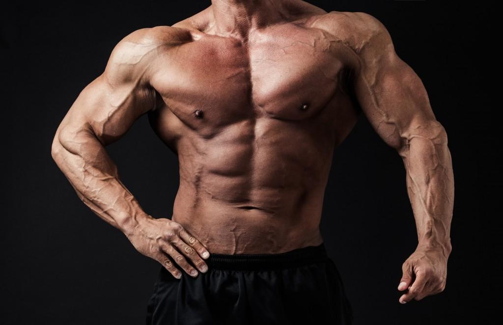 筋肉写真講座
